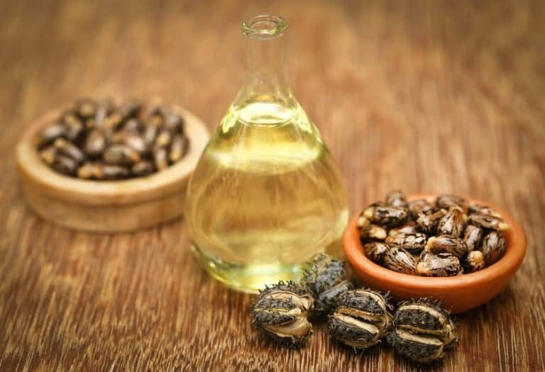 castor oil and seeds